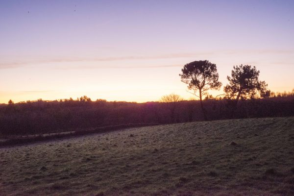 Cortegada - Sun Rise